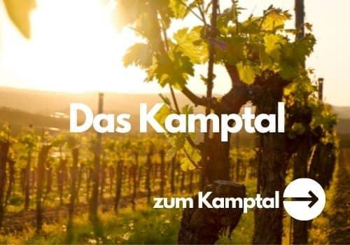 Kamptal Niederösterreich