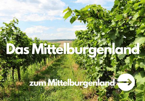 Wein aus dem Mittelburgenland