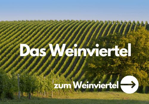 Wein aus dem Weinviertel kaufen